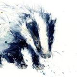 Badger 3175 320x219 Circle